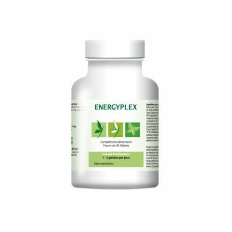 Energyplex + est un complément alimentaire naturel qui apporte de l´énergie et du tonus dans les moments de fatigue.